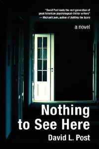 Nothing To See Here by David L. Post